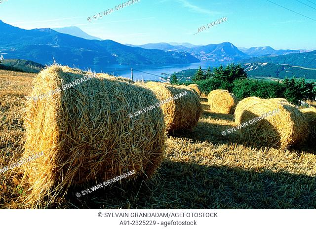 FRANCE.PROVENCE-ALPES.HAUTES-ALPES (05).SERRE PONCON LAKE AND STRAW STACK AT FORE