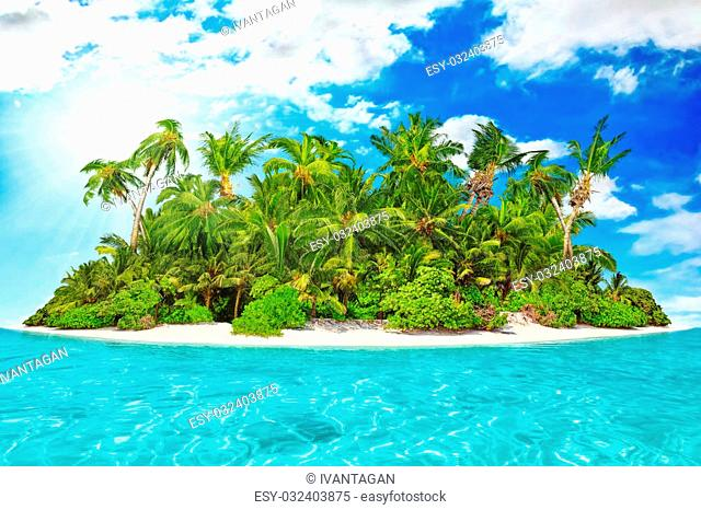 Whole tropical island within atoll in tropical Ocean on a summer day. Uninhabited and wild subtropical isle with palm trees