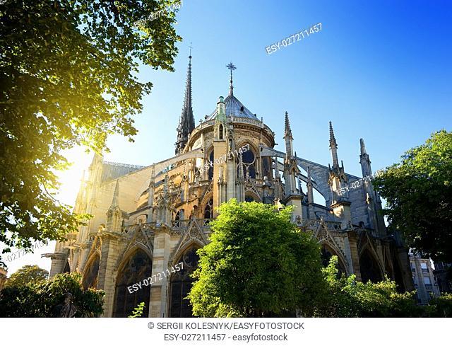 Notre Dame de Paris at sunrise, France
