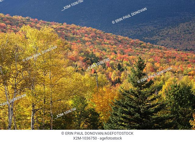 Mount Washington Valley - Pinkham Notch in Green's Grant, New Hampshire during the autumn months