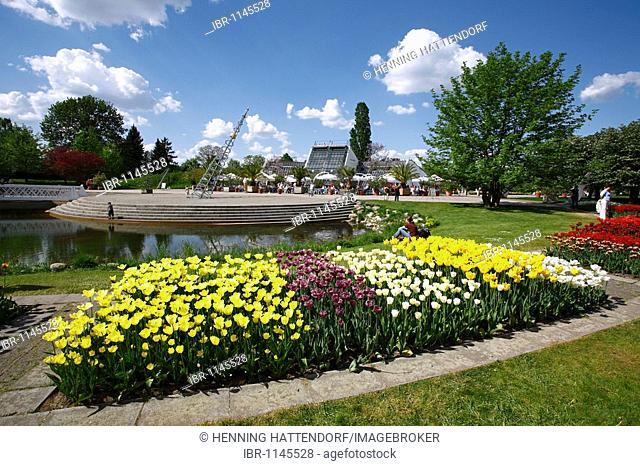 Garten 2021 britzer tulipan Britzer Garten
