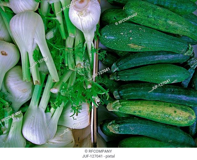 fennel and zucchini