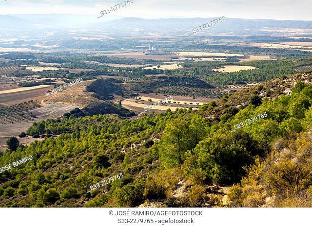 Country in La Alcarria from Rincon hills.Guadalajara. Castilla la Mancha. Spain. Europe