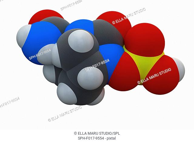 Avibactam drug molecule. Beta-lactamase inhibitor given in combination with antibiotics. Chemical formula is C7H11N3O6S. Atoms are represented as spheres:...