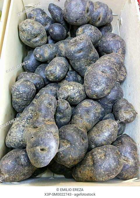 Blue potatoes for sale