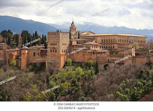 View to the La Alhambra from Mirador de San Nicolas, Albaicin Neighborhood, Albaycin, Albayzin, UNESCO World Heritage Site, Granada, Andalucia, Spain, Europe