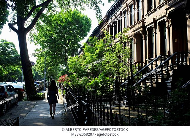 Park Slope, Brooklyn, New York, USA