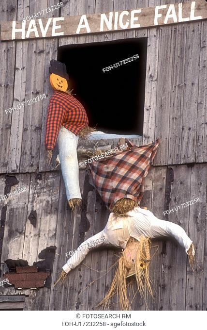 fall decoration, display, decorations, autumn, Have a Nice Fall A fall decoration of two scarecrows in a barn window (one is upside down falling out) in...