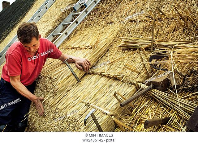 Man thatching a roof, thatching tools, including a wooden mallet, and shearing hooks