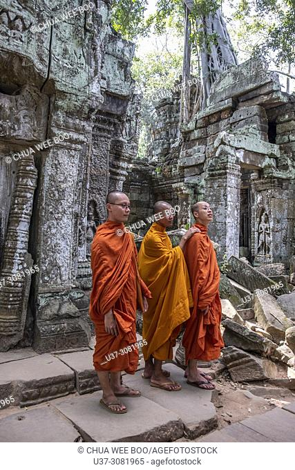 3 monks at Angkor Temples Complex - tree growing out of the ruins of the the Ta Prohm Temple, Angkor, Siem Reap Province, Cambodia, Asia, UNESCO
