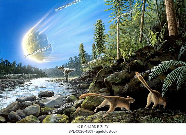 Illustration of the K/T Event at the end of the Cretaceous Period. A ten-kilometre-wide asteroid/comet is entering the Earth's atmosphere and a pair of mammals...