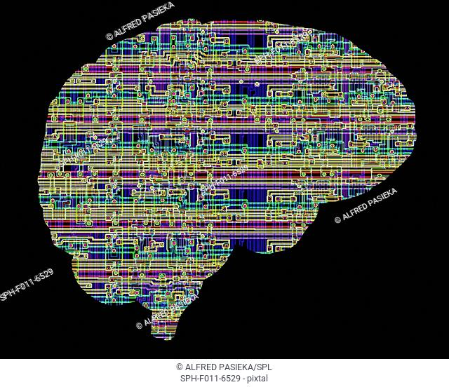 Artificial intelligence and cybernetics, conceptual image. This image of a computer chip structure, superimposed on a human brain