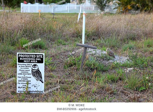 Burrowing Owl (Speotyto cunicularia, Athene cunicularia), owl sitting behind a warning sign at the breeding burrow, USA, Florida