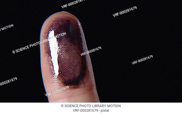 Human finger with ink on the fingertip for fingerprints