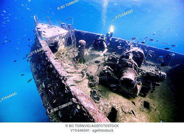 Diver on shipwreck Berwind. Bridgetown. Barbados