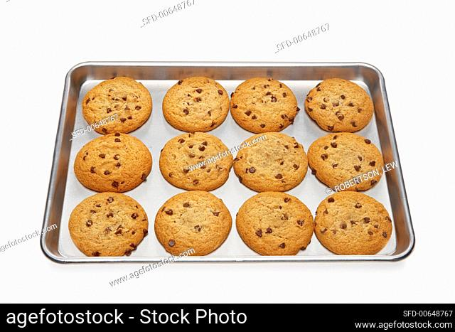 Chocolate Chip Cookies on a Cookie Sheet