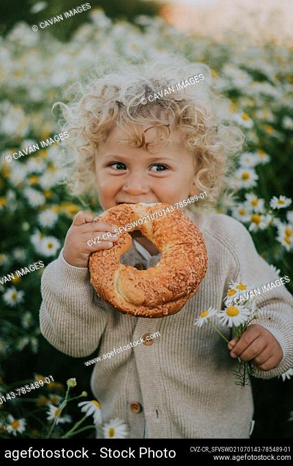 A little boy in a field with daisies is eating a bun
