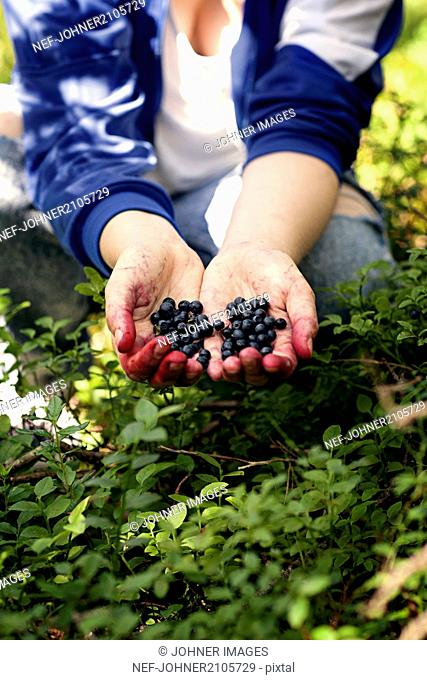 Woman picking blueberries