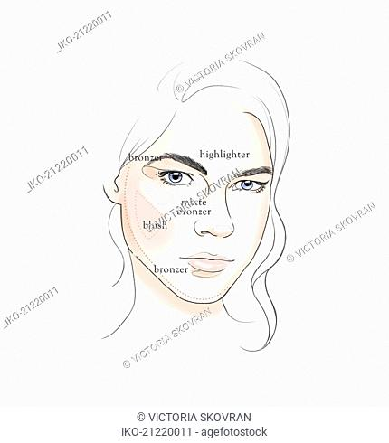 Tips for applying makeup in diagram on beautiful face