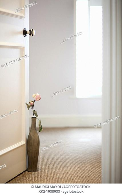 Feeling calm, pink flower and vase keeping the door open