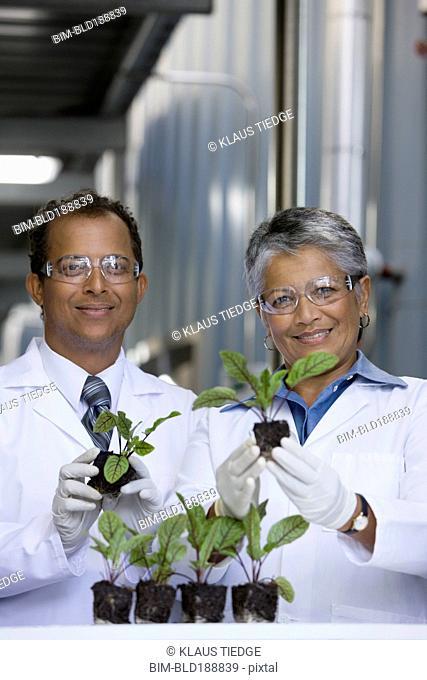 African scientists examining seedlings in factory