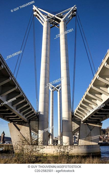Flaubert bridge over Seine river, Rouen, normandy, France