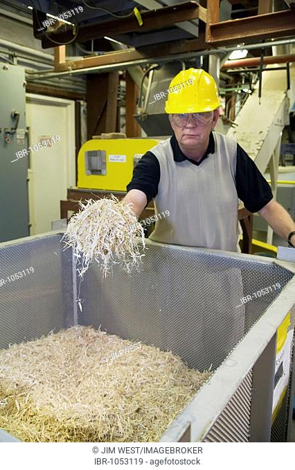George Douglas holding a handful of corn stover at the National Renewable Energy Laboratory, operated by the US Department of Energy