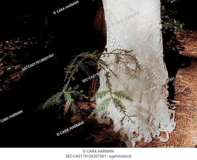 Bottom of wedding dress on pine needles