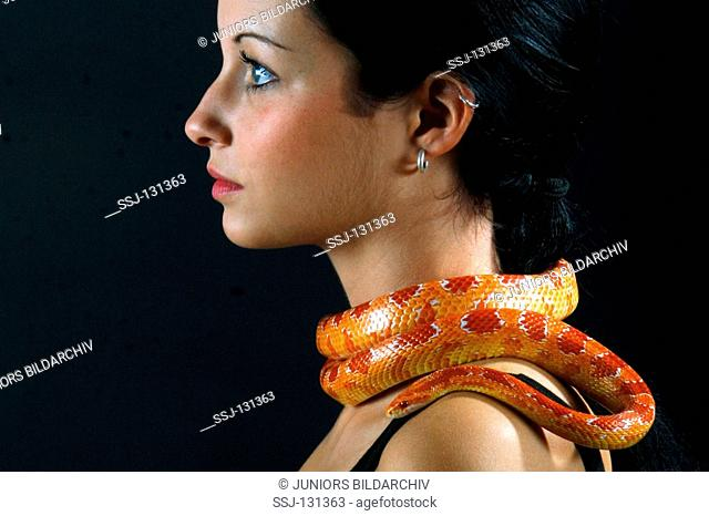 young woman with corn snake around her neck - Elaphe guttata