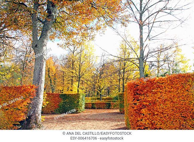 Garden detail Royal palace in La Granja de San Ildefonso Segovia Spain