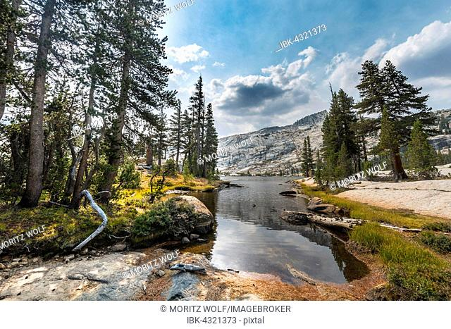 Lower Cathedral Lake, Sierra Nevada, Yosemite National Park, California