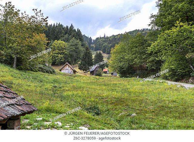 hay huts of the village Bermersbach, community Forbach, Northern Black Forest, Germany, cultural heritage of former immigrants from Tyrol