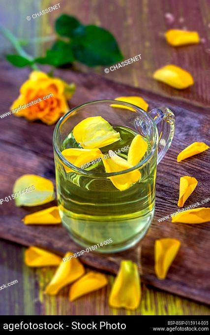 Glass cup of herbal aromatic roses tea with petals and rose stalk wooden background