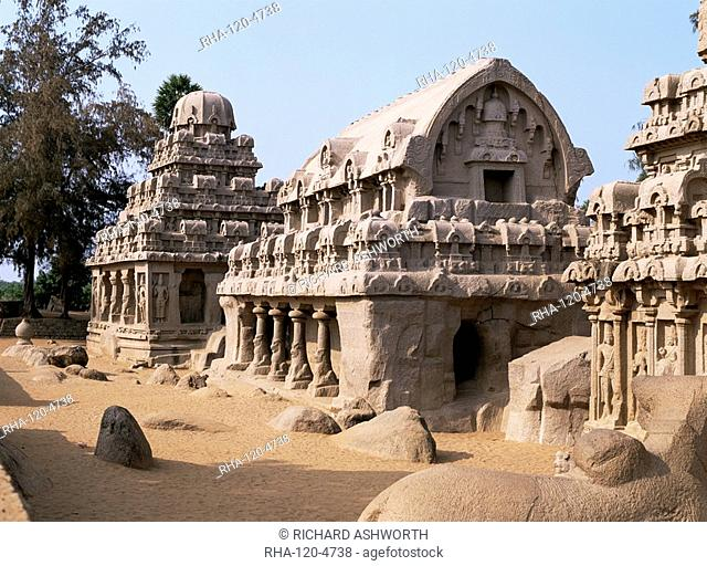 Group of rock cut temples called the Five Rathas 5 chariots, dating from circa 7th century AD, Mahabalipuram Mamallapuram, UNESCO World Heritage Site