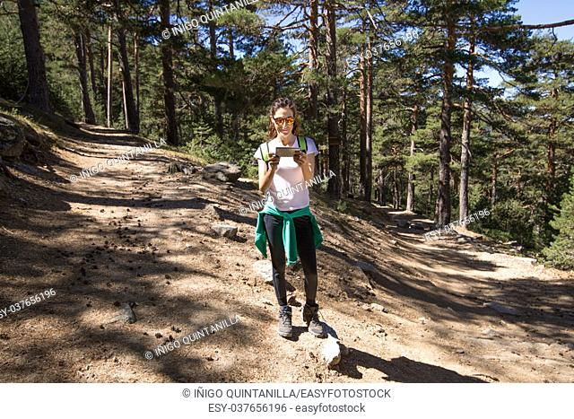 hiking woman with white shirt looking at smartphone to choose the right way, between two paths in forest of Navacerrada mountain, in Guadarrama Natural Park