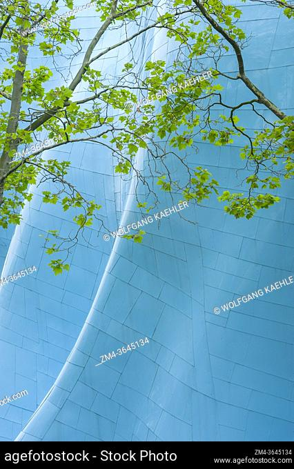 A tree in front of the metal architecture of the Museum of Pop Culture (designed by Frank O. Gehry) at the Seattle Center in Seattle, Washington State, USA