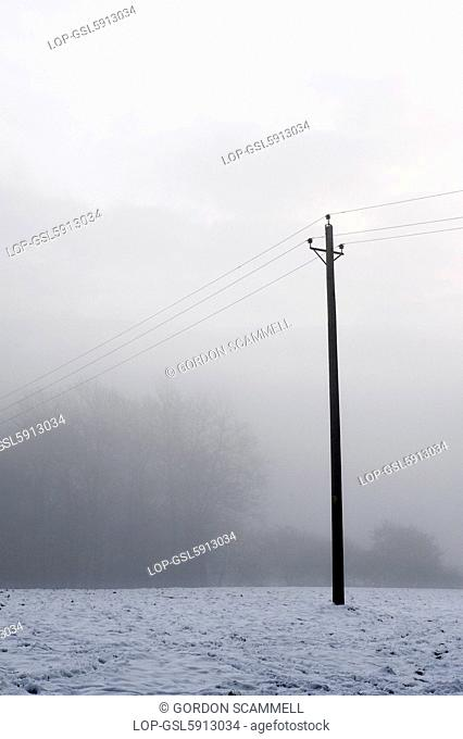 England, Essex, Westley Height. Freezing fog in Essex