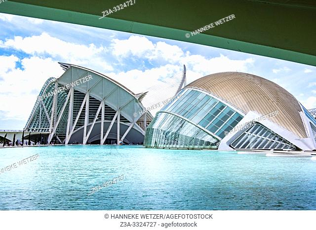 Planetarium and Science Museum, City of Arts and Science in Valencia, Spain, Europe