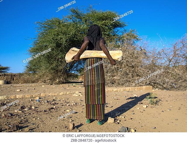 Rear view of an Afar tribe woman with an elephant femur bone found in a dry river, Afar region, Chifra, Ethiopia