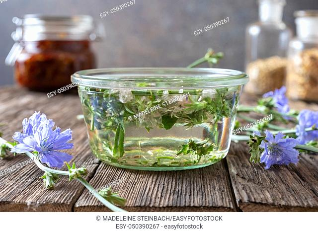 A jar filled with blooming common chicory and alcohol, to prepare a homemade herbal tincture