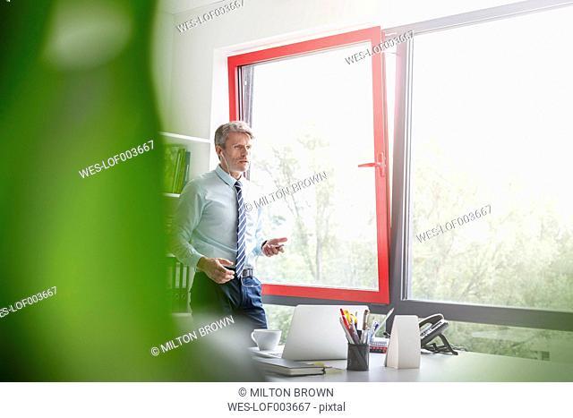 Bunisman standing by window, talking on the phone