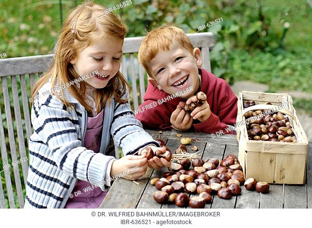 Children making crafts out of chestnuts in autumn