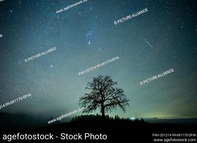 14 December 2020, Bavaria, Münsing: A shooting star can be seen during the Geminids meteor stream in the starry sky above a tree