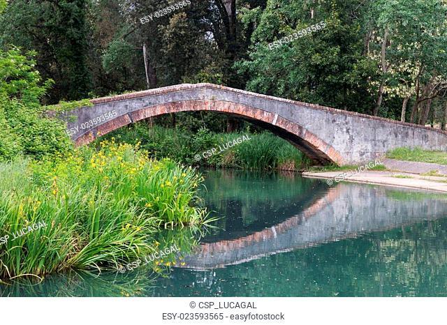 Marina di Pietrasanta old Prince's bridge over Fiumetto river