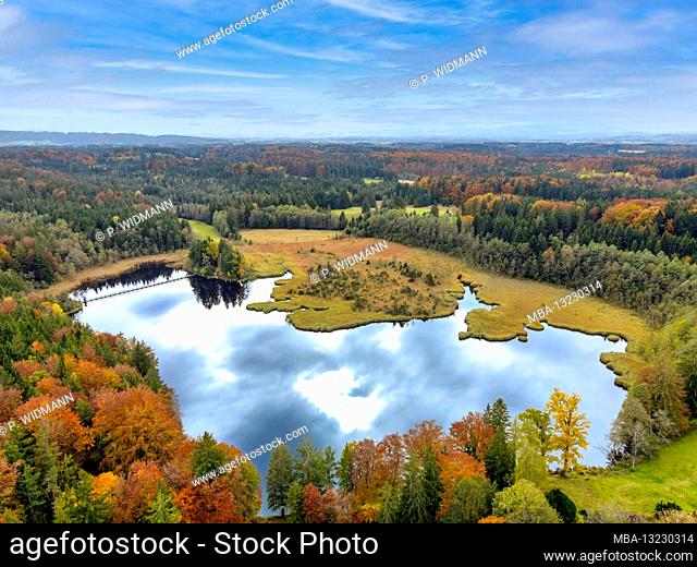 Autumn mood at Stadler Weiher, Alpine foothills, Upper Bavaria, Bavaria, Germany, Europe