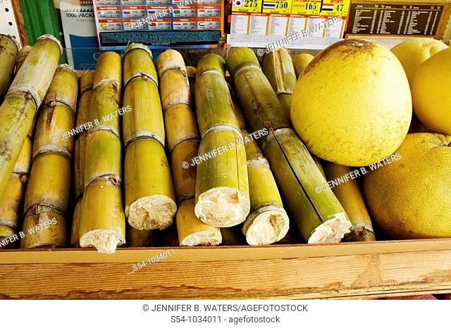 Sugar cane and palmettos for sale in Chinatown, Honolulu, Hawaii, USA
