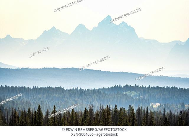 Fog falls over forest and Teton Mountain Range, Grand Tetons National Park, Teton County, Wyoming. USA