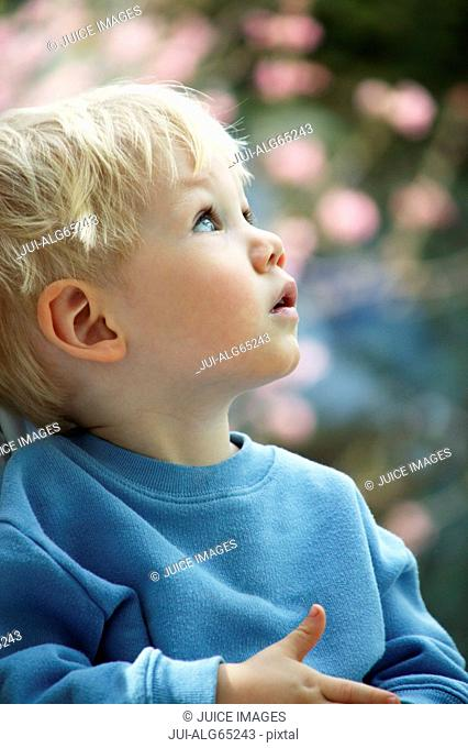 Portrait, young boy