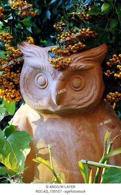 Garden figure  'owl' and Firethorn Germany Pyracantha spec Gartenfigur  'Eule' und Feuerdorn Deutschland