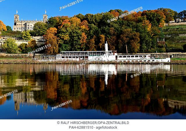 The paddle steamer 'Dresden' (built in 1926) and the Albrechtsberg Castle reflect in the Elbe river while autumn-like colored trees are seen in the background...